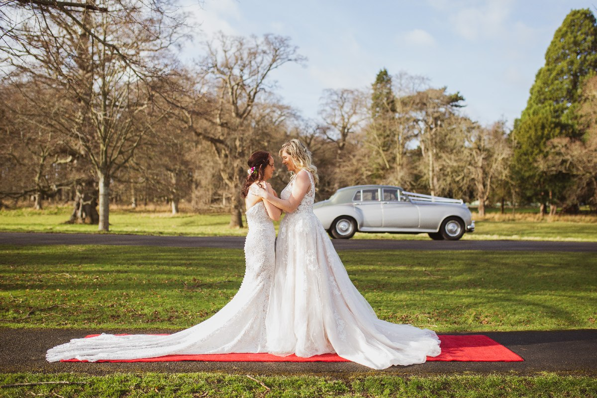 The Wonders of The Wedding Flock